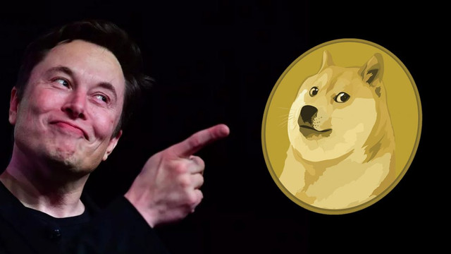 Musk'tan Dogecoin anketi